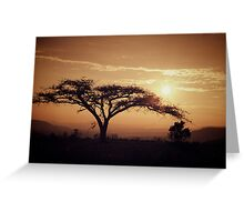 South Africa sunset Greeting Card
