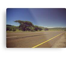South Africa road Metal Print