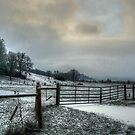 Diamond Hill ~ Snow ~ by Charles & Patricia   Harkins ~ Picture Oregon