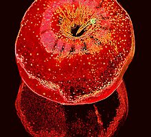 Big Red Apple & Reflection by Jean Gregory  Evans