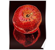 Big Red Apple & Reflection Poster