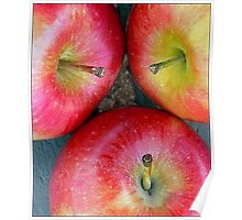 Apple,Apple,Apple Stems Poster