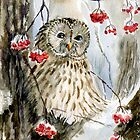 Barred owl by Redilion