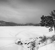Nederland Colorado Barker Reservoir Winter View BW by Bo Insogna