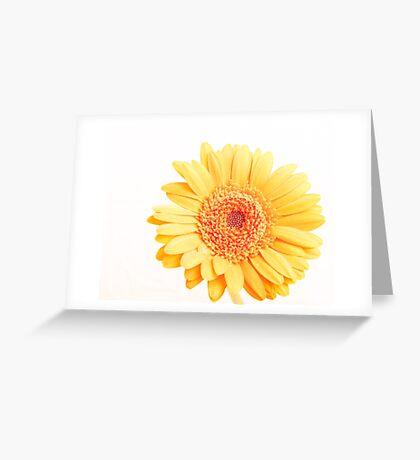 Landscape Flower Greeting Card