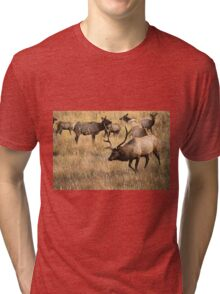 Herding Tri-blend T-Shirt