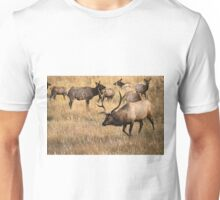 Herding Unisex T-Shirt