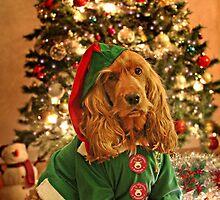 KIM - Christmas card (VI) by chelo