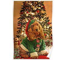 KIM - Christmas card (VI) Poster