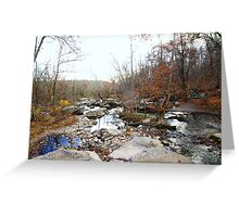 Spare and Lovely - The Leaves Are Almost Gone Greeting Card