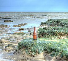 Bottle on the Beach by Nigel Bangert