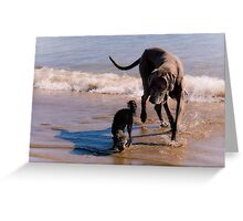 Friends come in all sizes........! Greeting Card