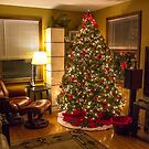 O Christmas Tree by Mikell Herrick