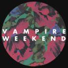 vampire weekend by mpadfootprongs