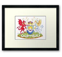 Heraldry Framed Print