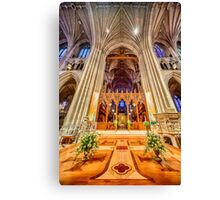 Magnificent Catheral VII Canvas Print