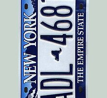NY License Plate  by careball