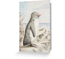 Rockhopper Penguin Greeting Card