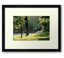 Springtime Sun Framed Print
