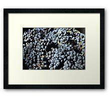 Potential Wine Framed Print