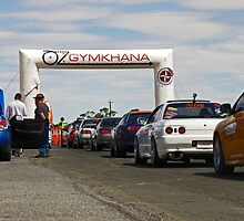 Line Up Oz Gymkhana by amberdale