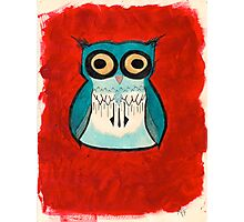 Owl HootHoot! Photographic Print