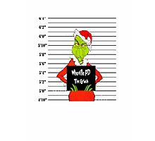How the Grinch Got Busted Photographic Print