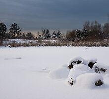 Fluffy Snowdrifts and Ominous,Threatening Skies  by Georgia Mizuleva