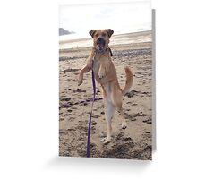 Happy dog Greeting Card