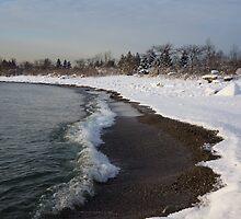Winter Beach - Lake Ontario, Toronto, Canada by Georgia Mizuleva