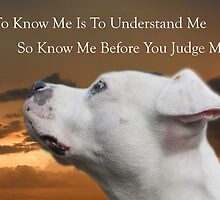 Know Me by Zdogs