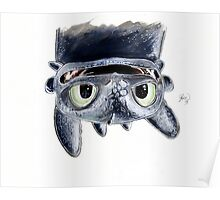 Toothless Upside Down Poster
