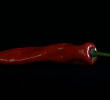 Red Pepper by hausofsilva