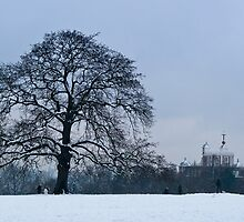 Royal Observatory in the snow by benastrada