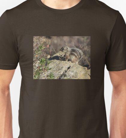 Harris' Antelope Squirrel Unisex T-Shirt