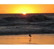 Santa Cruz Beach Sunset #6 Photographic Print
