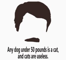 Ron Swanson - 'Cats are useless'  by meglauren