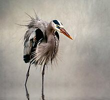 Heron in Mist by Tarrby