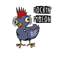 Rockin Pigeon Photographic Print