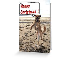 Happy Dog - Happy Christmas Greeting Card