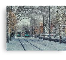 Never ending winter. Brookline, MA Canvas Print