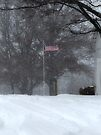 Waving in the Snow by FrankieCat