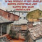 FROM MY WINDOW...BUON NATALE by Guendalyn