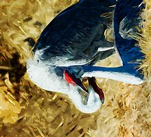 Sandhill Cranes Abstract Impressionism by pjwuebker