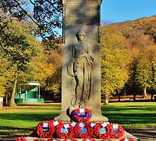 Rememberance Sunday Castle Park by Grant  O'Fee
