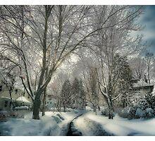 Brookline after Blizzard Nemo Photographic Print