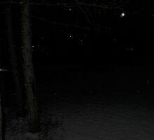 First snow by lumiwa