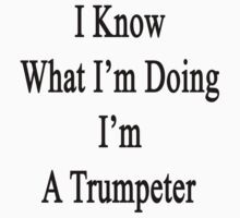 I Know What I'm Doing I'm A Trumpeter  by supernova23