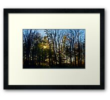 Coloured Light Framed Print