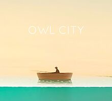 owl city  by andthebirdssing